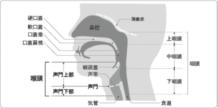 人体図(最終弁論から抜粋)